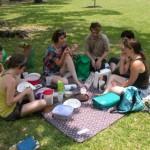 La Sebeș vor fi organizate spații speciale pentru picnic