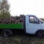 Peste 30 de metri cubi de material lemnos confiscaţi de poliţiştii din Sebeş