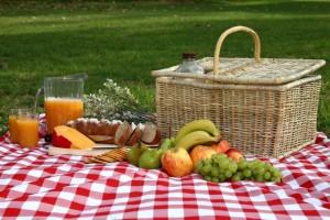 loc-picnic-sebes