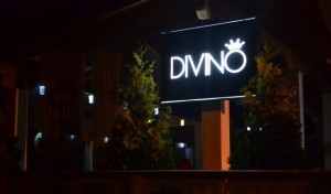 Divino-club-in-aer-liber-la-Sebes