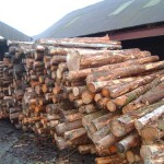 536 metri cubi de material lemnos confiscați de polițiști de la o firmă din Sebeș