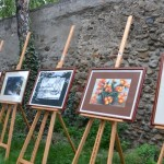 La Sebeș a fost organizat concursul Talentele Albei, spectacol destinat promovării artiștilor amatori din spațiul cultural al județului