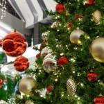 La Sebeş, activităţi cultural-artistice dedicate sărbătorilor de iarnă