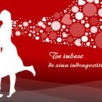 Mesaje Valentine`s Day 2014. Ce declaraţii, urări, SMS-uri şi mesaje de dragoste puteţi trimite persoanei iubite   sebesinfo.ro