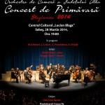 """Orchestra de Cameră a Judeţului Alba va concerta vineri, 28 martie, la Centrul Cultural """"Lucian Blaga"""" din Sebeş"""
