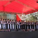 """Câştigătoarea primei etape a Festivalului """"Cultură pentru cultură"""" 2014 este comuna Roșia de Secaș"""