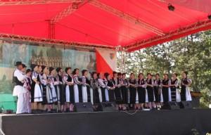 festivalul-cultura-pentru-cultura-2014