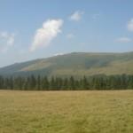 Ciobanii din Săsciori sunt pe cale să-şi recâştige în instanţă păşunea strămoşilor