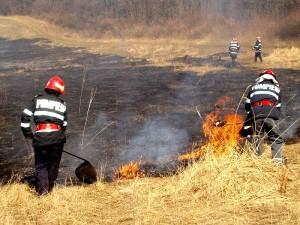 pompieri-incendiu-paioase