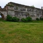 Ruinele castelului Martinuzzi din Vințu de Jos au ajuns adăpost pentru animale