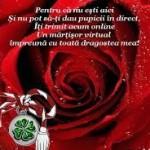 Mesaje de 1 martie 2015. Ce sms-uri, felicitări şi mesaje puteţi trimite cu ocazia venirii primăverii | sebesinfo.ro
