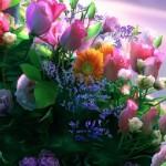 Obiceiuri, superstiţii și tradiții de Florii: Ramurile de salcie sunt așezate înainte de culcare sub pernele fetelor nemăritate | sebesinfo.ro