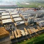 Companiile Enel, Dedeman și Hornbach, somate să nu mai achiziționeze lemn de la Schweighofer