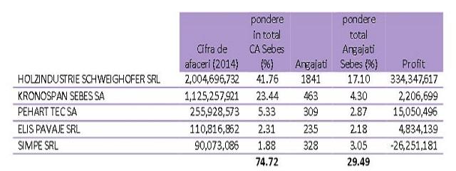TOP-5-companii-Sebes-2015