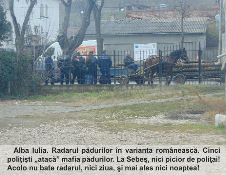 lemne politisti