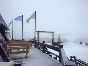 schi-sureanu-15-ianuarie-2016