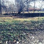 Consiliul local Sebeş alocă 200.000 de lei pentru documentaţia de reabilitare a Parcului Arini