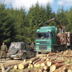 O treime dintre localnicii din Sebeș sunt de părere că pădurile şi lemnul le aduc o viaţă mai bună