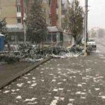 Pană de curent la câteva locuințe din cartierul Lucian Blaga – furtuna a doborât un brad, iar subsolul unui bloc a fost inundat