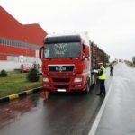 Peste 3600 metri cubi de material lemnos au fost confiscați în ultimele trei luni de polițiștii din județul Alba