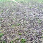 """Starea deplorabilă a suprafeței de joc a Stadionului """"Arini"""" din Sebeș obligă oficialii Şurianului să mute la Vinţu de Jos ultima partidă a turului"""