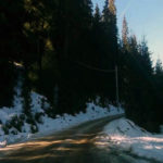 Modernizarea drumului Oașa – Luncile Prigoanei – Poarta Raiului se împiedică de… buturugile Romsilva