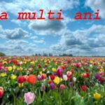 Nume de femei și bărbați care se sărbătoresc de Florii | sebesinfo.ro