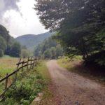 Primăria Sebeș împreună cu alte 5 primării din zonă s-au unit și își fac propriul lor drum turistic până în Luncile Prigoanei