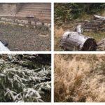 În Munții Șureanu au cazut, astăzi, primii fulgi de nea ai iernii 2017-2018