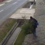 Nu ai bani de pom de Crăciun? Nu-i nimic… în Sebeș îl poți lua direct de pe stradă!